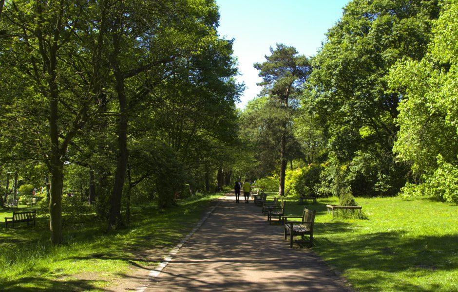 Roundhay Park Leeds near Clayton Hotel Leeds